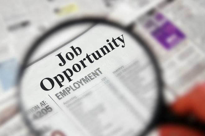 रोजगार, भारत, employement market, employement market in india
