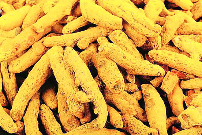 turmeric prices today, turmeric production in india, indiaturmeric production