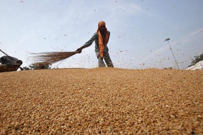 Madhya Pradesh, Madhya Pradesh government, Madhya Pradesh CM, shivraj singh chouhan, Madhya Pradesh farmers, farmers MSP, payments scheme, deficiency payments scheme