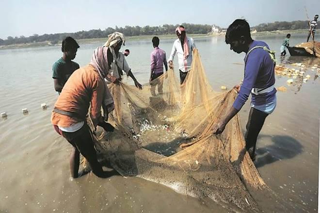 CMFRI, fishery, farmers, fish seller website, farmer website, fishery mobile app, farmer mobile app,marinefishsaleswebsite