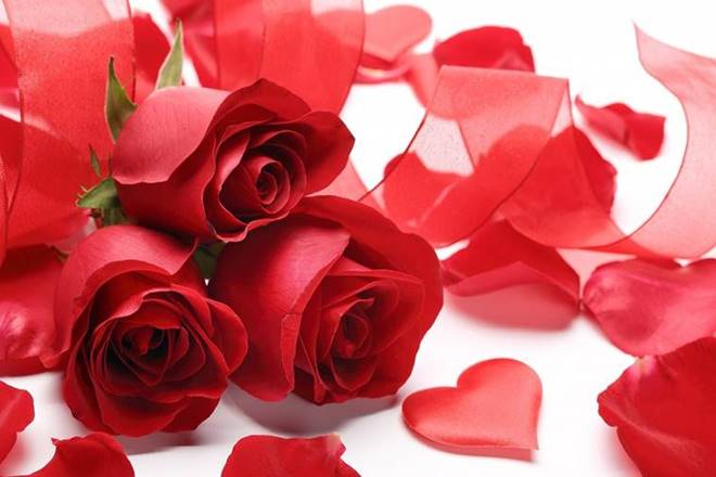 Happy Rose Day 2018: Valentine Day is at door steps with Rose Day kicking off the week