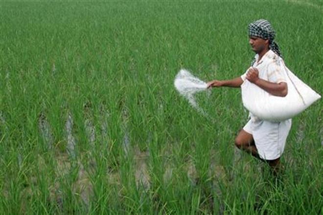 DBT, fertiliser, subsidy savings