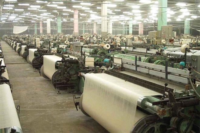 ramie, fabric, eco friendly fabric, ramie fabric, ramie fibre, meghalaya