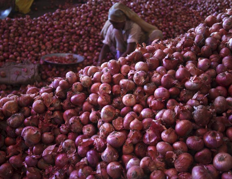 nafed, onion, nashik, onion news