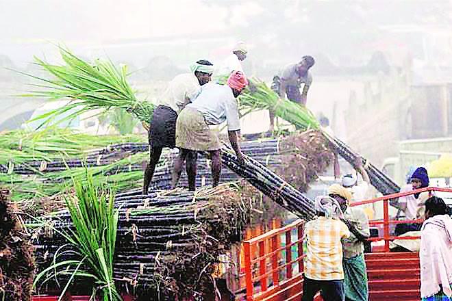 farmers, uttar pradesh, sugar industry, economy