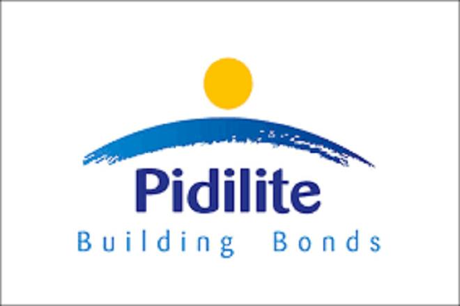 Pidilite,GDP,GDP growth,CIPY Polyurethanes,floor coatings market, india