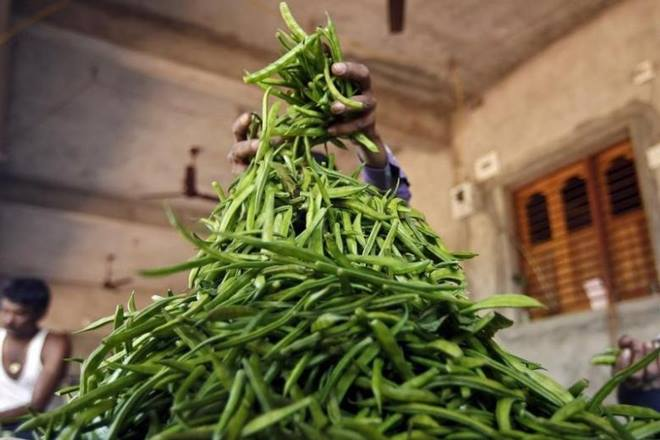 Having crashed for four years in a row, India's guar gum exports turned the corner with a near 40% jump to $647 million in 2017-18