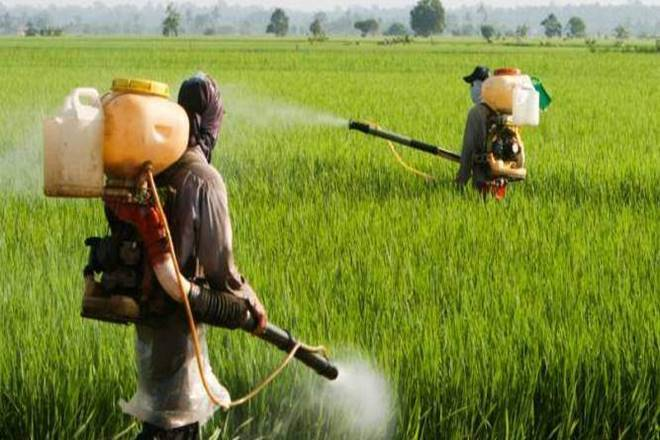 PESTICIDES, AGRICULTURE SECTOR, AGRICULTURE INDUSTRY