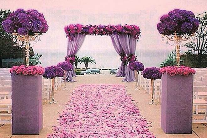 colour purple, purple, purple colour significance,Pantone, colour of the year, International Women's Day, new delhi, purple shade