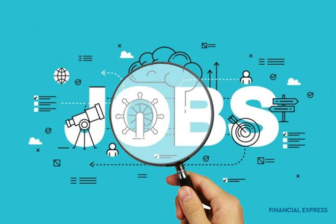 employment, EPFO, job creation, narendra modi, EPFO payroll data, organised sector, jobs in india, EPFO news
