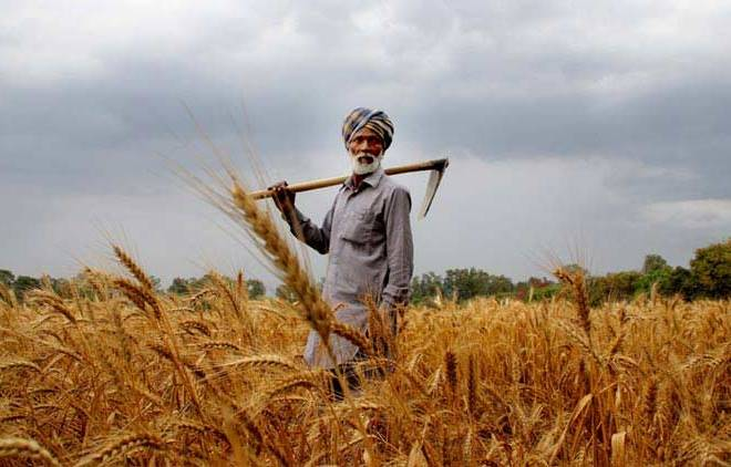 Agri research, education funding, Icrier Study, India