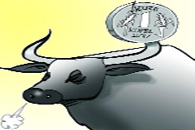 Portfolio, Nifty, Nifty 50, Sensex, CNX 500, PAT, CAGR,foreign investors