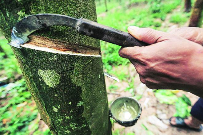 natural rubber, rubber, rubber imports,Chennai Port, tyre companies