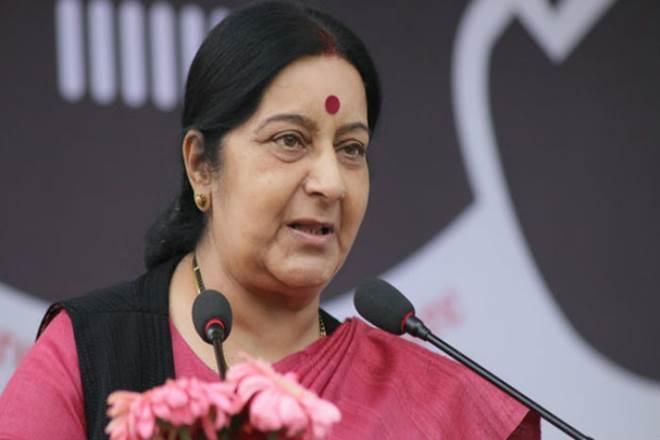External Affairs Minister Sushma Swaraj, sushma swaraj, india, eu, european union