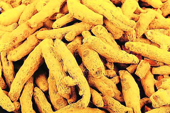 Telangana government,Telangana, turmeric, turmeric farmers, specialcell for turmeric farmers