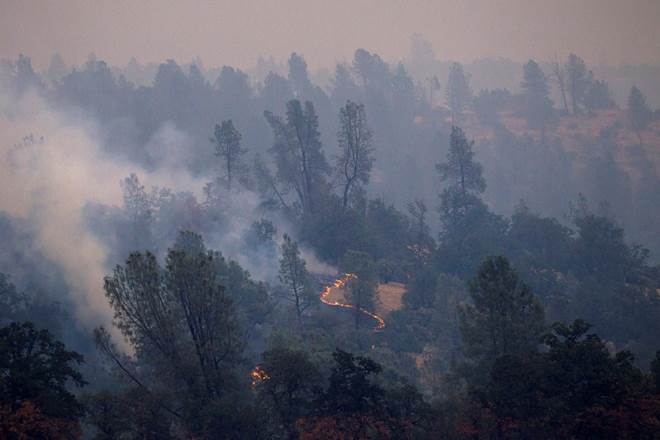 California, California wildfire, six killed, homes burned, wildfire, firefighters, world news