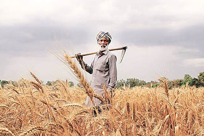 Modi's MSP 'blatant fraud'; here's why farmers' body will hold protest march on Friday