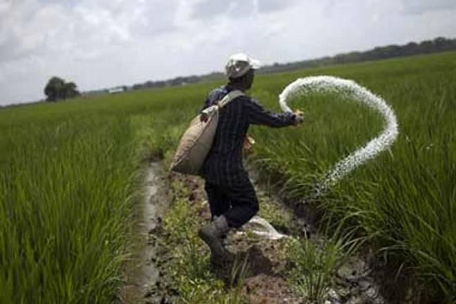 fertilises, industrial sector