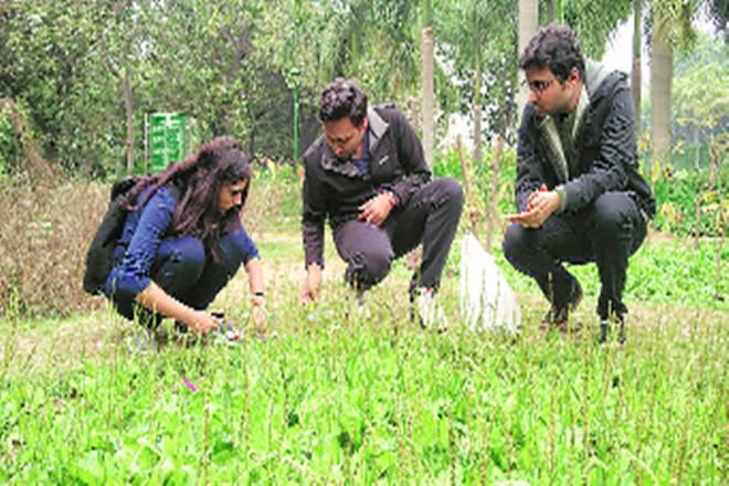 environment, environmental work, work for environment