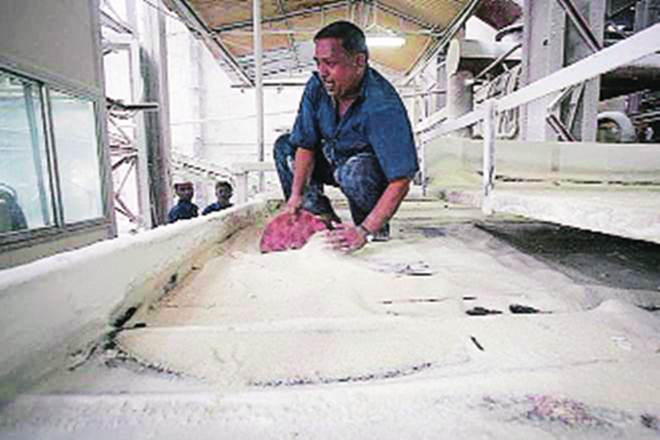 sugar, sugarcane industry, economy