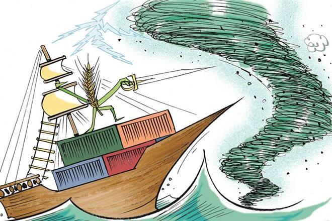 financialexpress.com - guest - How to double agricultural exports by 2022